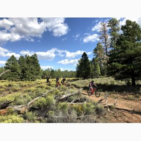 RIDE the Canyons Mountainbike rejser, Grand Canyon