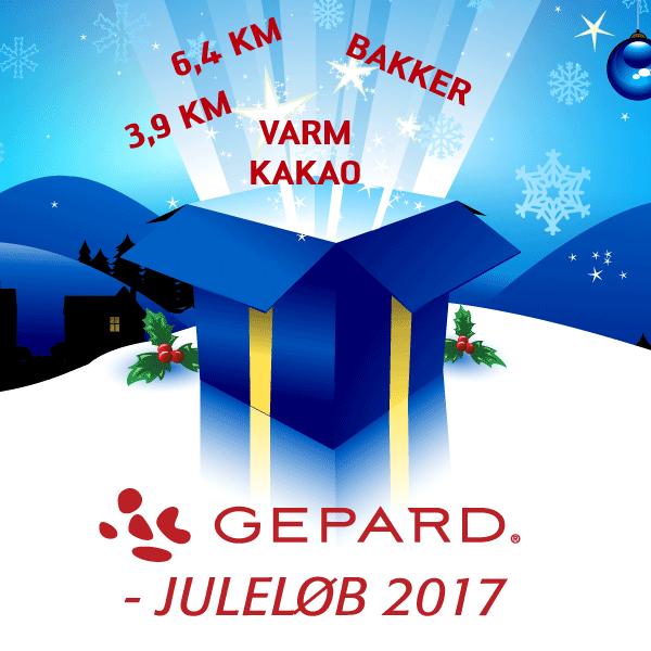 GEPARD Juleløb 2017