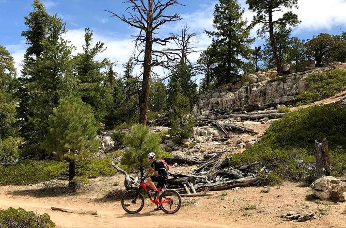 Mountainbike - Utah og Nevada - September 2019